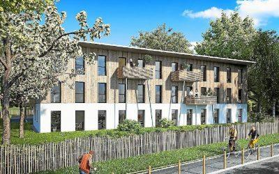 Les espaces extérieurs : cheminements, plantations,… du centre d'affaires eco-durable d'Arradon
