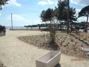 Plantations-plage-guidel-(2)