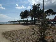 Plantations-plage-guidel-(4)